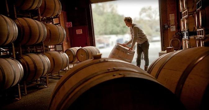 Varieties of Grape Used in Winemaking